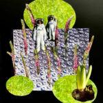 Kunstenaars dromen dat ze vliegen in De Kloostergangen